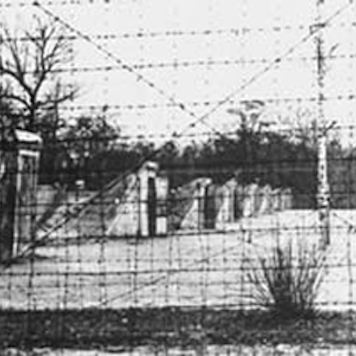 Syrets concentration camp (also: Syretskij concentration camp), a Nazi German concentration camp erected in 1942 in a Kiev's western neighborhood of Syrets. Barbed wire fence. By World War II unknown photographer (Babi Yar, Berdichev Revival) [Public domain or Public domain], via Wikimedia Commons.
